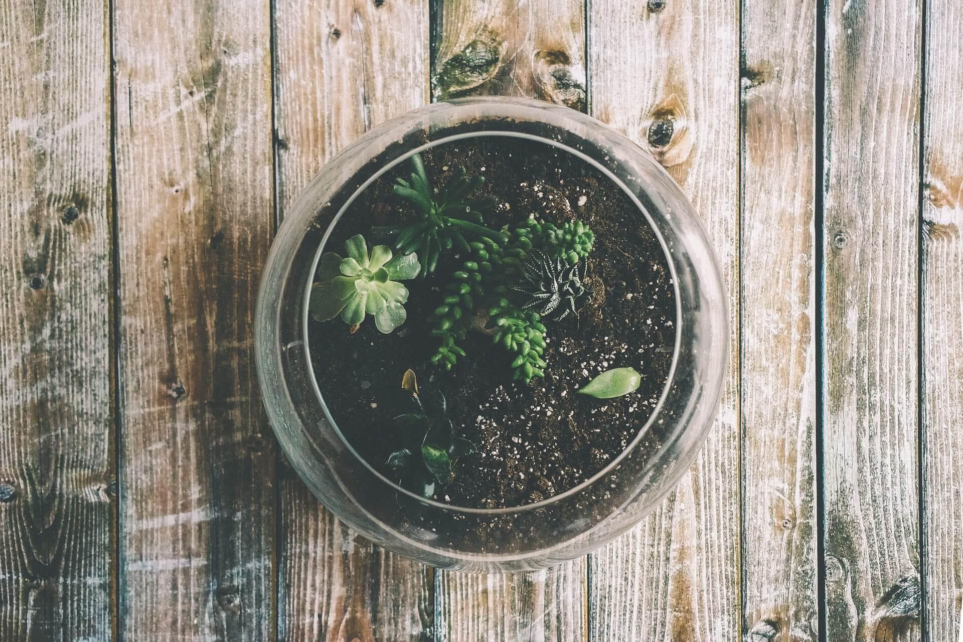 Wie ökologisch sind Böden aus Kunststoff